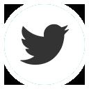 twitter_social_media_web