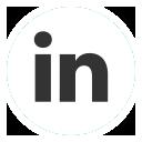 linked_in_social_media_web